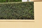 Airville Decorative fencing 30